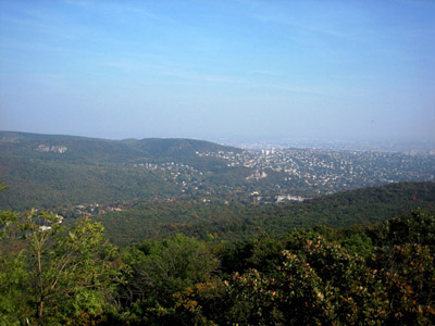 The Buda Hills: A quiet little town with a big secret....