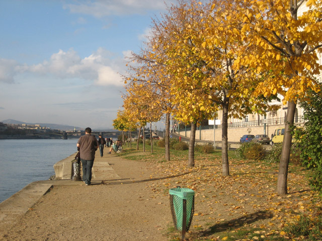 The Danube River and fall color.